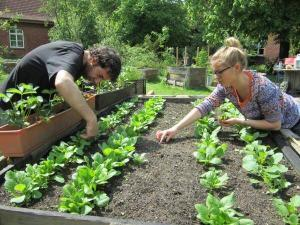 Participants working in community garden. Photo: courtesy by Nicole Rogge and GrüneBeete e.V., FH Münster/ Pressestelle.
